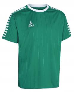 CAMISOLA SELECT ARGENTINA SS (green/white)